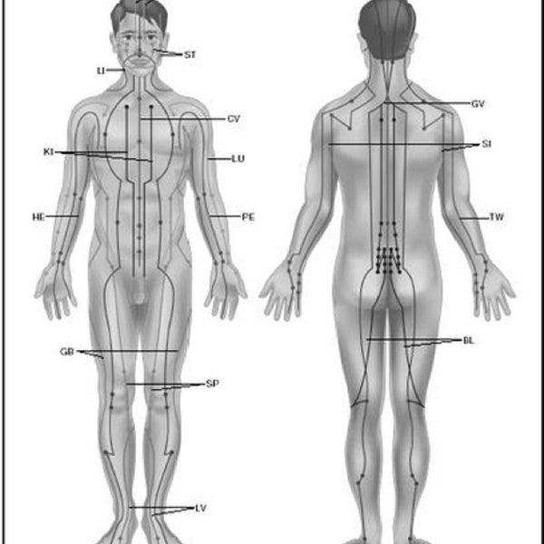 Соответствующие органы и функции. Расположение энергетических центров (чак