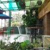 Foto Melo Di Raso, Padang