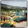 Foto JungleLand Adventure Theme Park, Bogor
