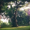 Foto NuArt Sculpture Park, Bandung