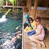 Foto Waroeng Bamboe Lesehan Sidomulyo, Batu