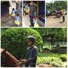 Foto Jakarta Perkumpulan Equestrian Center (JPEC), Bogor