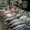 Foto Fresh Market, Bogor