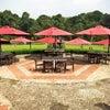 Foto Grand Garden Cafe & Resto,