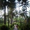 Foto Bukit Dagi, Kota Magelang