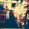 Фото Цветочный магазин