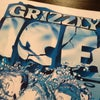 Фото Grizzly Bar