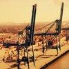 Фото Южный морской порт