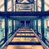 Museum of Estonian Architecture