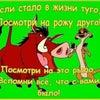 Фото Висма Люкс, ООО