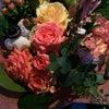 Фото Flowers