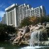 Photo of Hyatt Regency Grand Cypress