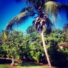 Casa De Campo Intl, Photo added:  Saturday, March 17, 2012 2:30 PM