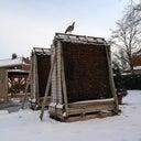 karsten-flachshaar-11401174