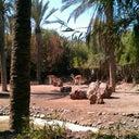 tobias-vom-dorp-11436070