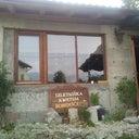 lynda-hardman-13095735