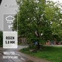 david-ferch-13409189
