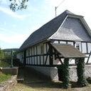 sascha-reininghaus-13456785