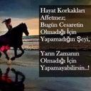sinan-kardogan-134662266