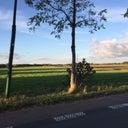 dirk-goedhart-15191011