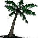 evelien-palm-19526463
