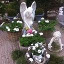 lydia-stork-233089