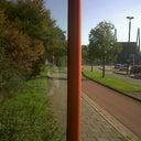dennis-van-hoorn-13378817