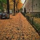 sebastian-totzke-24283538