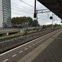 bas-van-der-ploeg-328566