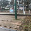 pingkan-sumampow-3811128