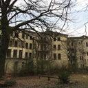 felix-schaumburg-422710