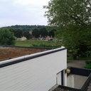 thijs-harmens-44266157