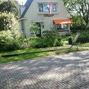 baldwin-leijen-48808850