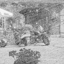 bruno-s-51885721