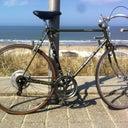 bonnie-van-gessel-52733406
