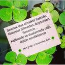 ayten-uysal-56184117