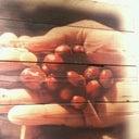 mark-van-houten-13206243