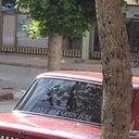ayse-erkus-66044079