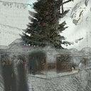 susanne-gersch-71932218