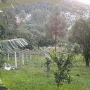 luiz-rossoni-74316551