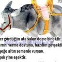 pinar-canim-85484638