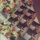 scissa-bob-89875997