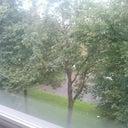 menno-van-den-brink-11446509