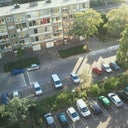 gijs-van-der-laan-5980005