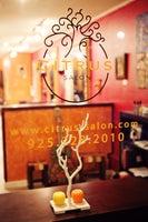 Citrus Salon