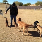 Photo taken at Echo Mountain Dog Park by Tiffany B. on 12/15/2013