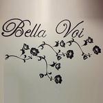 Bella Voi Salon