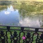 Фото Веранда в парке в соцсетях