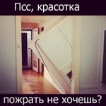 Фото Медуза в соцсетях