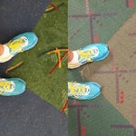 @flyPDX has all new #PDXcarpet. It's lovely. But my heart still loves the old version. For a taste of the old version, walk down the A terminal.